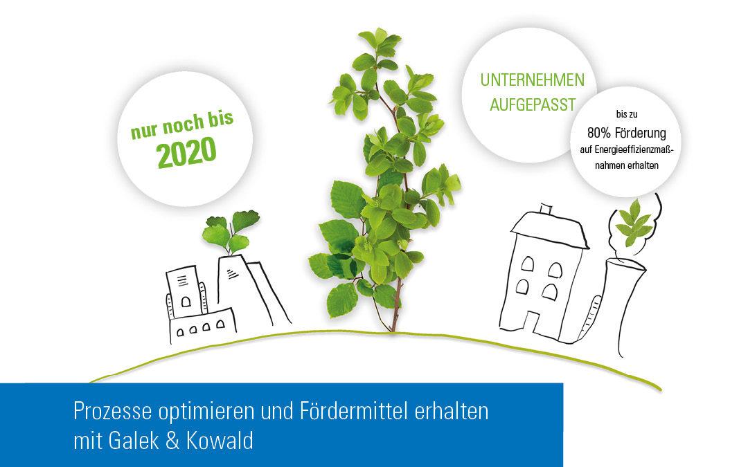 Prozesse optimieren und Fördermittel erhalten mit der Galek & Kowald GmbH